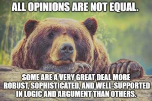 opinions bear